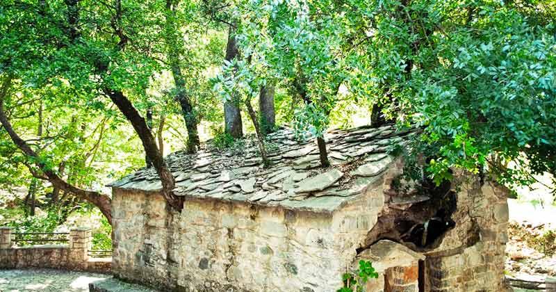 11 septembrie: Ziua unei Sfinte Mare făcătoare de minuni! Din acoperişul bisericii ei cresc şi azi copaci